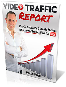 Video Traffic Report 2013
